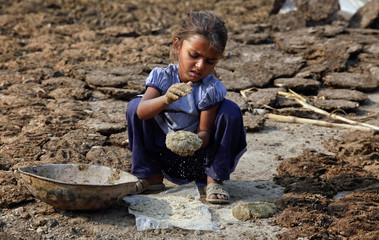 A girl covers cow dung patties with hay to store them for cooking fuel in the outskirts of Lahore