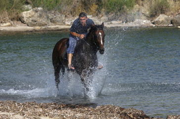 An Albanian boy rides his horse along the Adriatic coast in the port city of Durres
