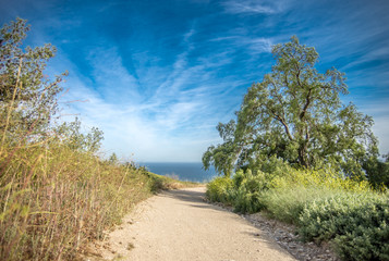 Hiking trail by the sea with a blue cloudy sky.