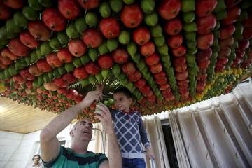 Members of the Samaritan sect decorate a traditional hut known as a sukkah with fruits and vegetables on Mount Gerizim, on the outskirts of the West Bank city of Nablus
