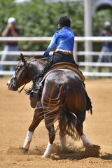 A rear view of a rider twisting the horse on the spot on the sandy field