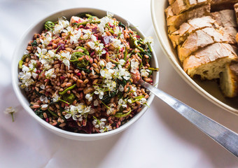 healthy grain salad made with farro, beets, fiddleheads, and cherry blossums, served with fresh baked bread
