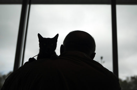 An owner holding his cat is silhouetted against a window during a local cat exhibition in Almaty