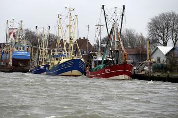 Ships are pictured in the harbour of Buesum at the coast of the North Sea