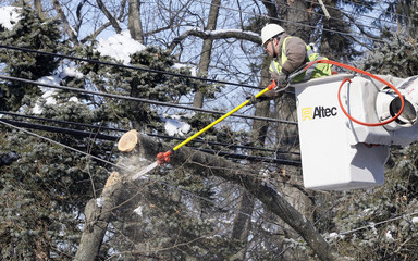 A worker cuts away a tree limb hung up on utility lines that caused a power outage in Upper Dublin Township.