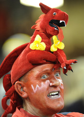 A Welsh rugby fan wearing a toy dragon looks on before the international rugby union match against South Africa at the Millennium Stadium in Cardiff