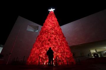 Wider Image: Christmas trees around the world