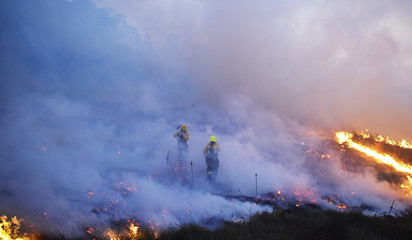 Firefighters walk through smoke while fighting a forest fire near the Basque town of Berango