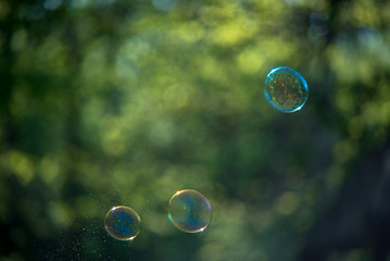 Soap bubbles on a green background