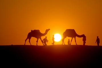 SILHOUETTE EVENING IN DESERT