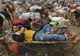 A trader sleeps with his belongings at a livestock market ahead of the Eid al-Adha festival in Kolkata