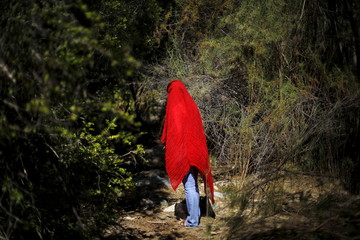 Human rights activist walks through a native forest at the Pupio estuary near Caimanes town