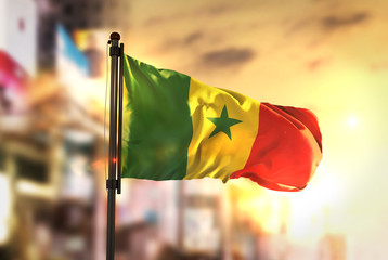 Senegal Flag Against City Blurred Background At Sunrise Backlight
