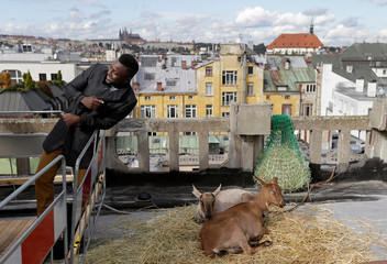 A visitor poses for a photo with a pair of goats on the terrace of a rooftop community garden and cafe atop the Lucerna Palace in Prague