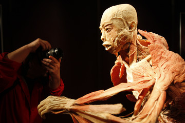 "Journalist takes pictures of plastinated human body, part of ""The Human Body"" exhibition, during a media tour at Antipa Museum in Bucharest"