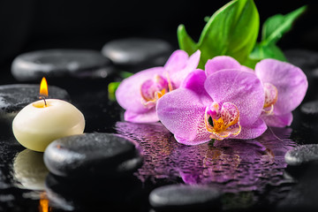 beautiful spa concept of blooming twig lilac orchid flower, green leaf, candle with water drops and...
