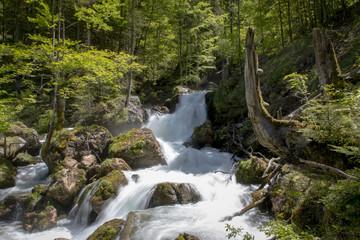 Wasserfall, Kaskade im Hartelsgraben, Gesäuse,Steiermark,Österreich