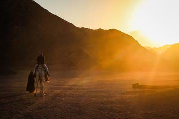 desert of Egypt