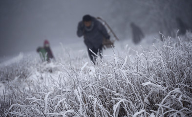 People carry their sledges up the hill during this winter's first snow at the Feldberg mountain