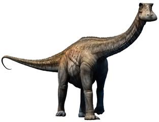 Wall Mural - Nigersaurus