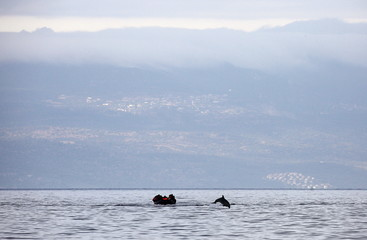 A dolphin jumps in front of a raft overcrowded by Syrian refugees while crossing a part of the Aegean Sea from Turkey to the Greek island of Lesbos