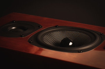 Close up wooden speaker