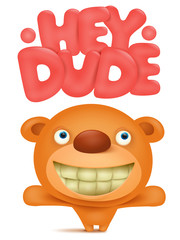 Toy soft teddy bear cartoon character with hey dude title