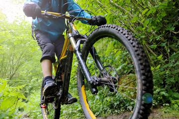 Mountainbiker auf einem Singletrail