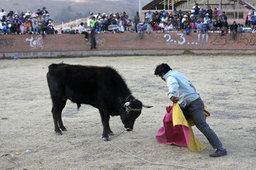 An amateur torero participates in a local bull fighting competition, at Lake Titicaca, Copacabana