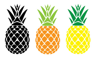 vector pineapple fruit