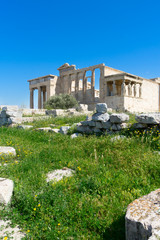 Fototapete - Erechtheion temple with green grass over clear blue sky in Acropolis of Athens, Greece