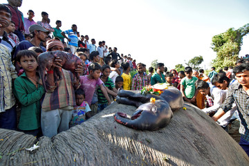 People prepare to bury a female elephant and two fetuses, who according to the forest officials were killed after being hit by a train in the Hojai district in the northeastern state of Assam