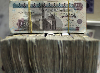 Egypt's pound notes are pictured in stacks of 100 as employees count money at an exchange office in downtown Cairo