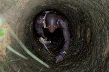 An artisanal gold miner peers up from a small-scale mine where he is working in Kalana