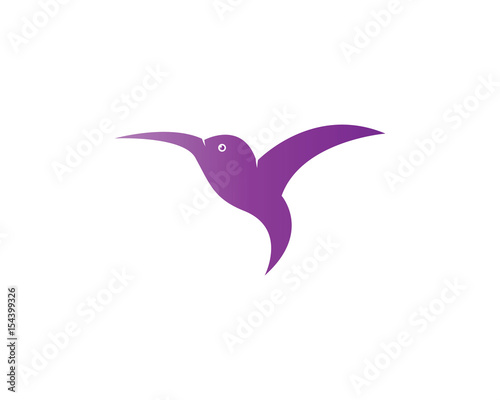 hummingbird logo template fotolia com の ストック画像とロイヤリティ