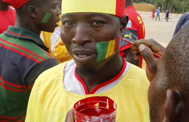 Mali's national flag is painted on the cheek of a supporter before the team's 2015 African Cup of Nations Group D soccer match against Guinea in Mongomo