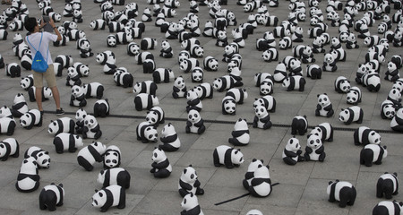 Man takes pictures of installation of panda bear sculptures in Berlin