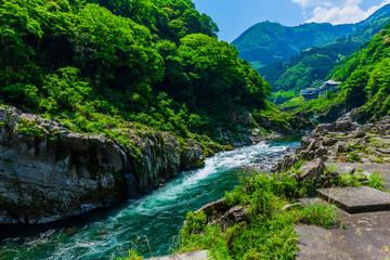 Fototapeta 渓流と風景 日本 アジア obraz