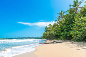 Cahuita - National park with beautiful beaches and rainforest in Costa Rica