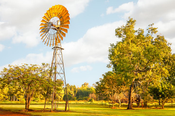 Windmills are gold in the Outback! Litchfield National Park, NT, Australia.