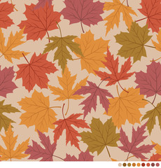 Autumn pattern with colorful Maple leaves background