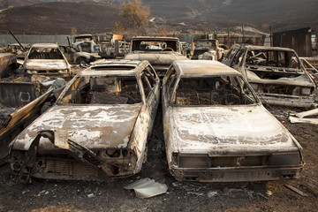 Cars burnt by the Chelan Complex fire are seen at a junkyard that was overcome by flames in Chelan, Washington