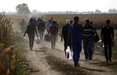 Migrants walk on a dirt road as they approach the Croatian border near the town of Sid