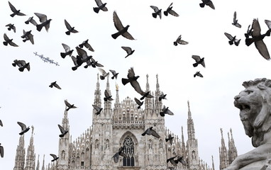 Italian aerobatic team Frecce Tricolori (Tricolour arrows) flies past pigeons after performing at the Expo 2015 opening ceremony in Piazza del Duomo in Milan