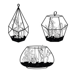 Vector set with black and white cactuses and succulents in terrariums. Illustration with home plants in scandinavian style.