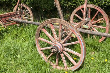 Wooden wheels on old rural cart on green grass meadow