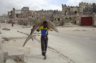Omar Feisal, Reuters photographer based in Somalia, has won 1st Prize Daily Life Single category with this picture of man carrying a shark through streets of Mogadishu