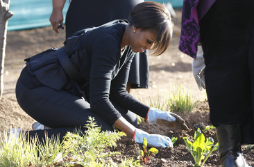 U.S. first lady Michelle Obama plants spinach as she gardens during a community service project at Vhuthilo Community Center in Soweto township