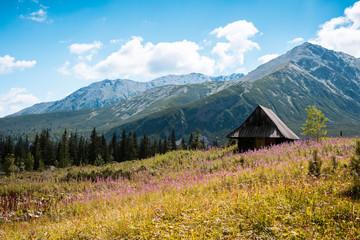 Fototapeta Hala Gasienicowa, Tatra mountains Zakopane Poland