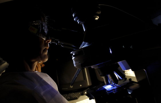 A health technician inspects blood sample from a patient infected by the bite of an Aedes aegypti mosquito through a microscope at Costa Rican Institute for Research and Teaching in Nutrition and Health (INCIENSA) in Tres Rios